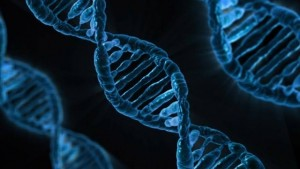 dna_methylation_article